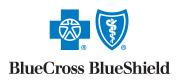 BlueCross BlueShield Insurance